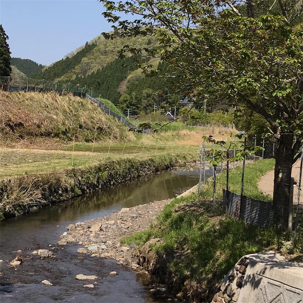 f:id:aloha-hanahana-chuchu351:20180420111040j:image