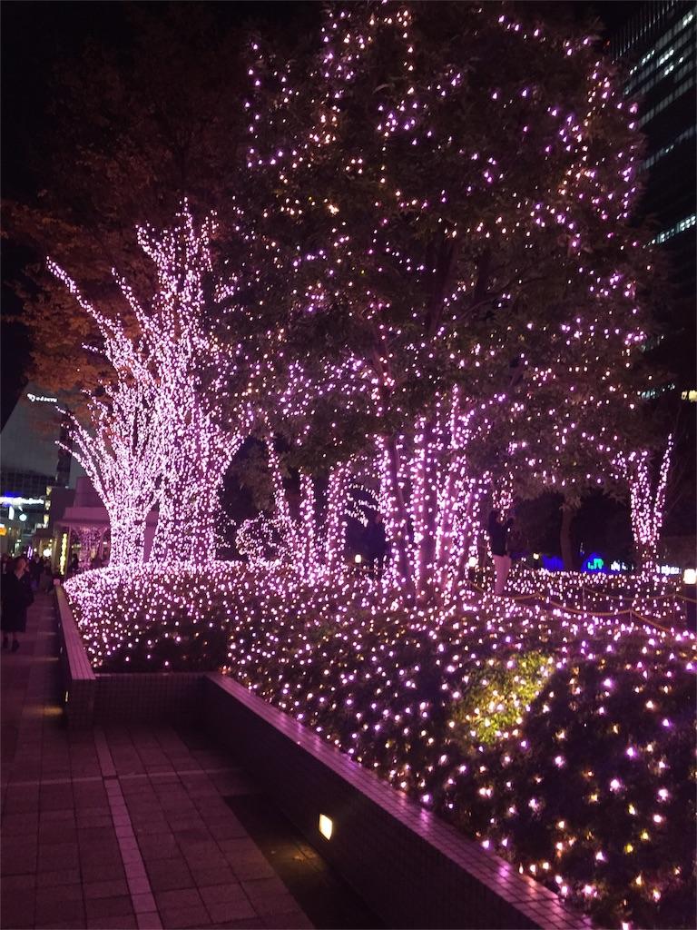f:id:aloha2277:20161212213605j:image