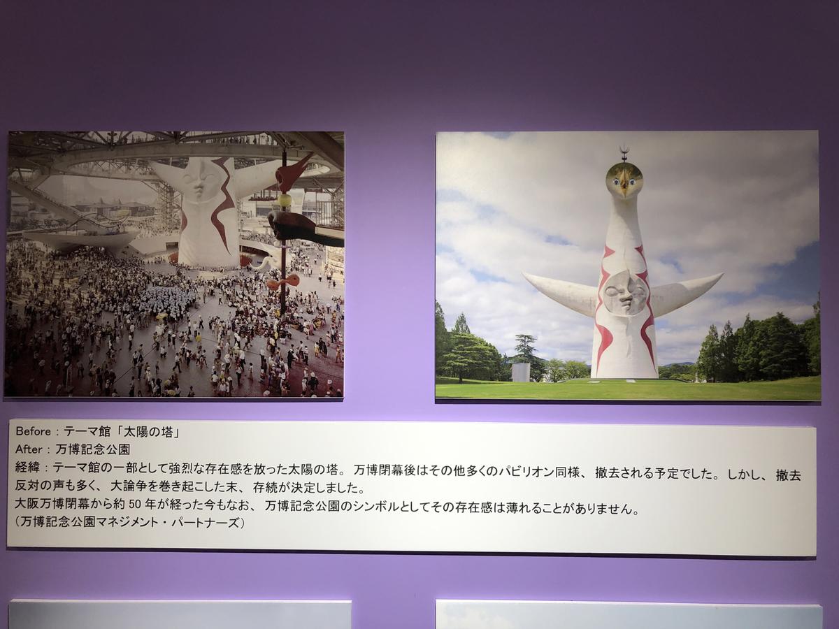 左からビフォー、アフターの写真と解説文