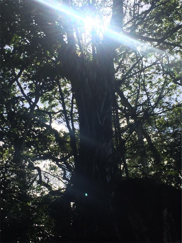 f:id:alohakananaka:20170509194012j:image