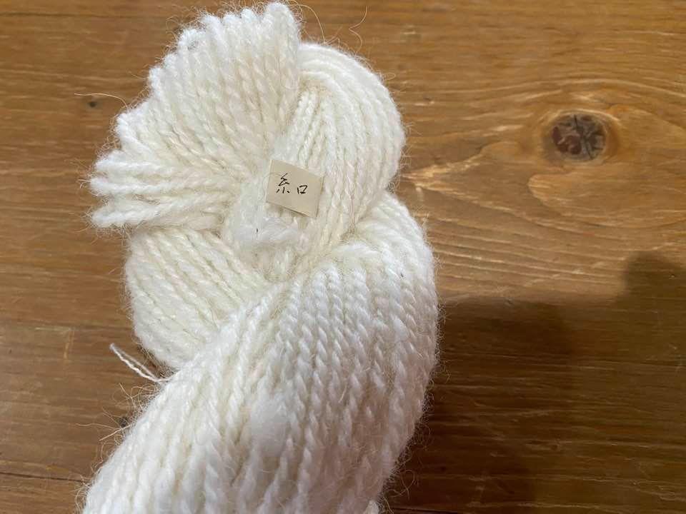 アルパカの白い毛