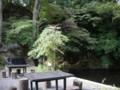 [大子シュッポ]蕎麦屋からの風景。渓流のそばの立地