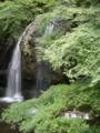 [大子シュッポ]月待の滝。実は滝の裏に回れるのです。あ、撮ってないし;