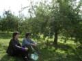 [大子シュッポ]りんご園で体育座り