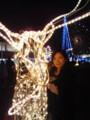 光るトナカイと私。