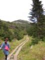 標高2000m超の散歩。すずしー