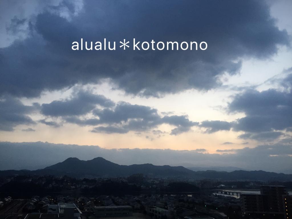 f:id:alualu0312:20170224065217j:plain