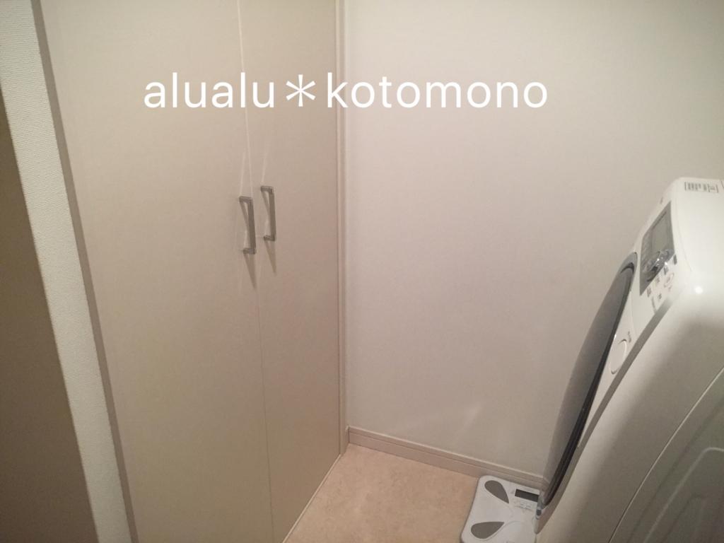 f:id:alualu0312:20170224115553j:plain