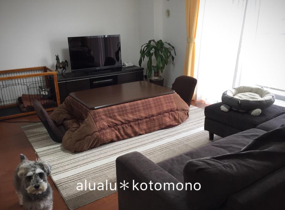 f:id:alualu0312:20170302102527j:plain