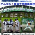 盛岡大学附属甲子園出場記念CD