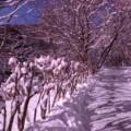 f:id:am453:20110213085251j:image:medium