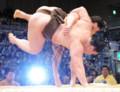 大相撲九州場所 安馬、白鵬を倒す…この2人が2敗で首位 - 毎日新聞