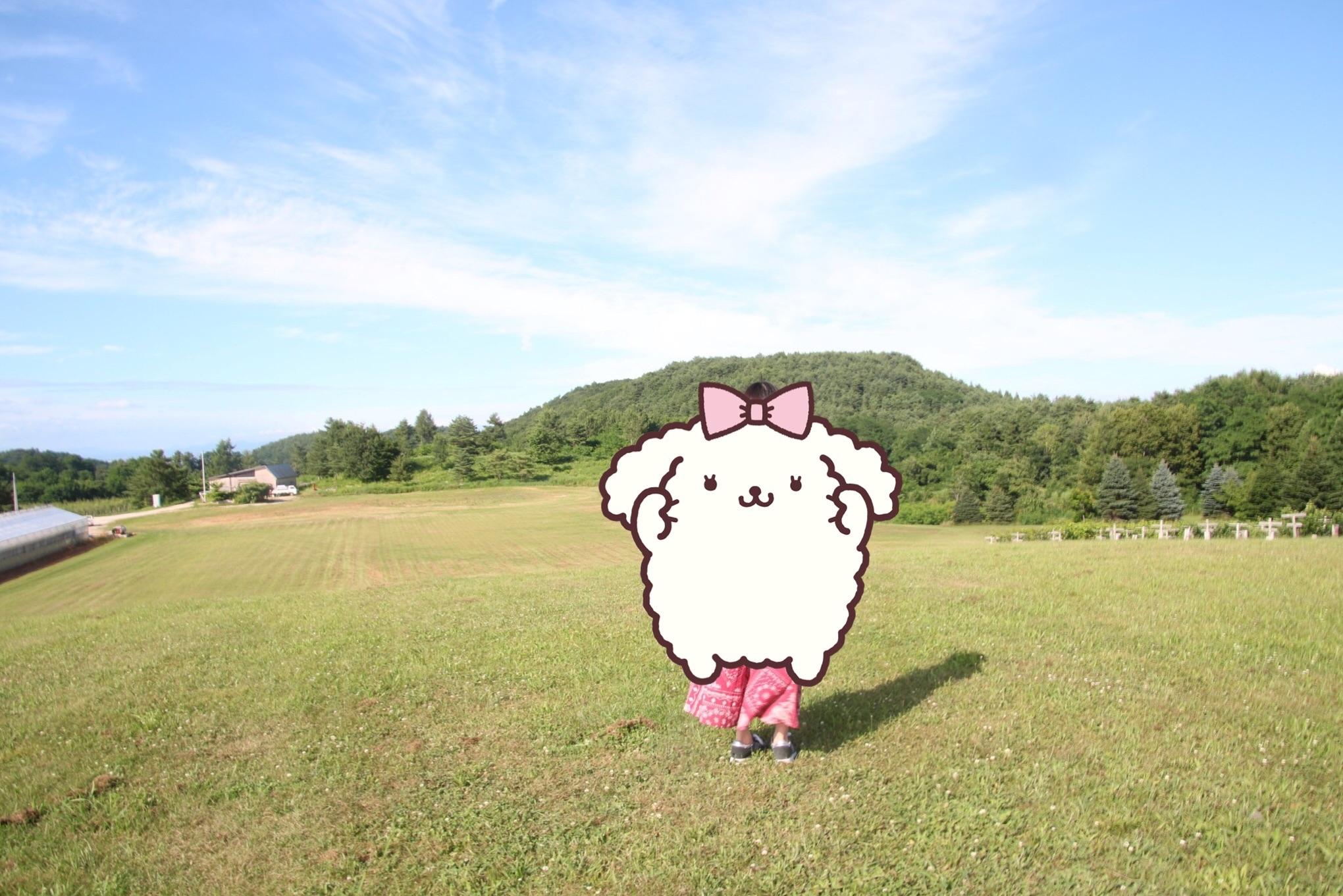f:id:amagurikokko:20170827010342j:image