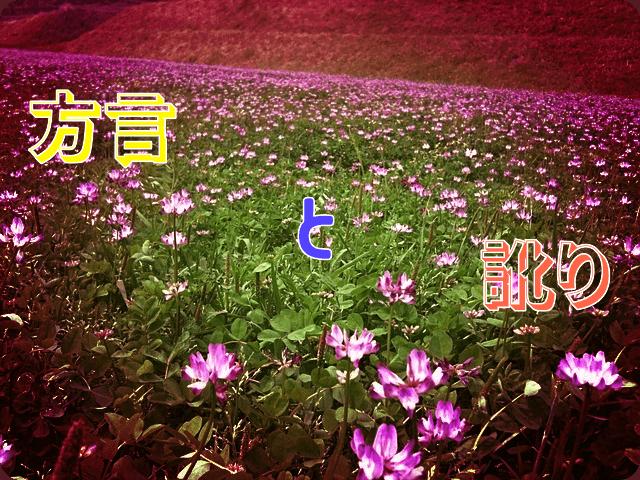 f:id:amai310mizu:20190329041031p:plain