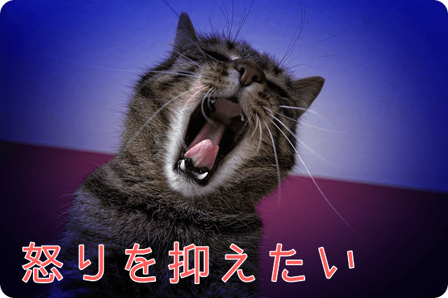 f:id:amai310mizu:20190501084859p:plain
