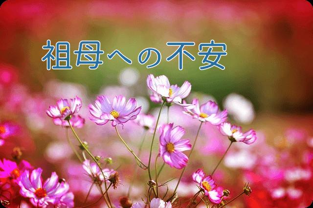 f:id:amai310mizu:20190510184920p:plain
