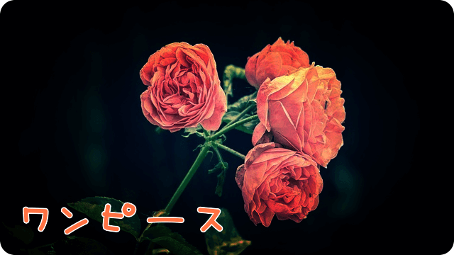 f:id:amai310mizu:20190611154025p:plain
