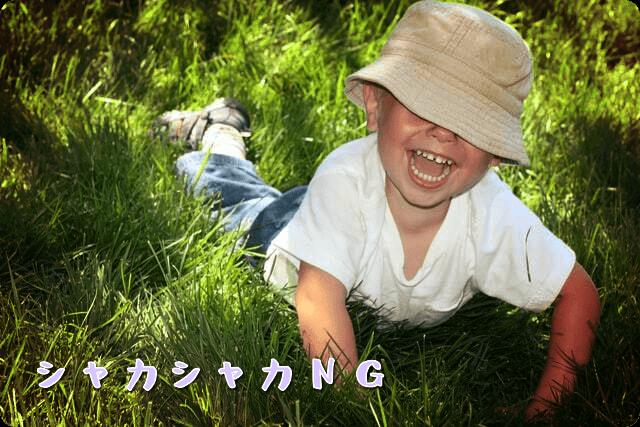 f:id:amai310mizu:20200515081015p:plain