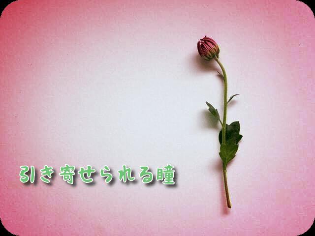 f:id:amai310mizu:20200914022115p:plain