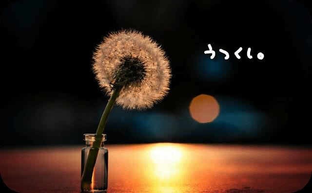 f:id:amai310mizu:20201018145949p:plain