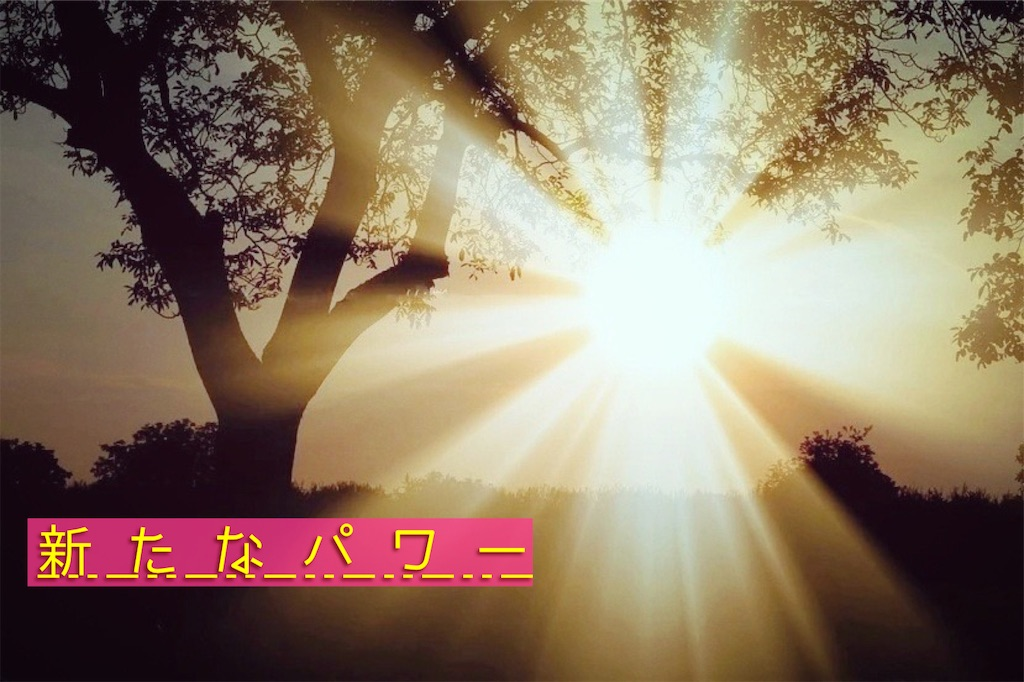 f:id:amai310mizu:20210109152847j:image
