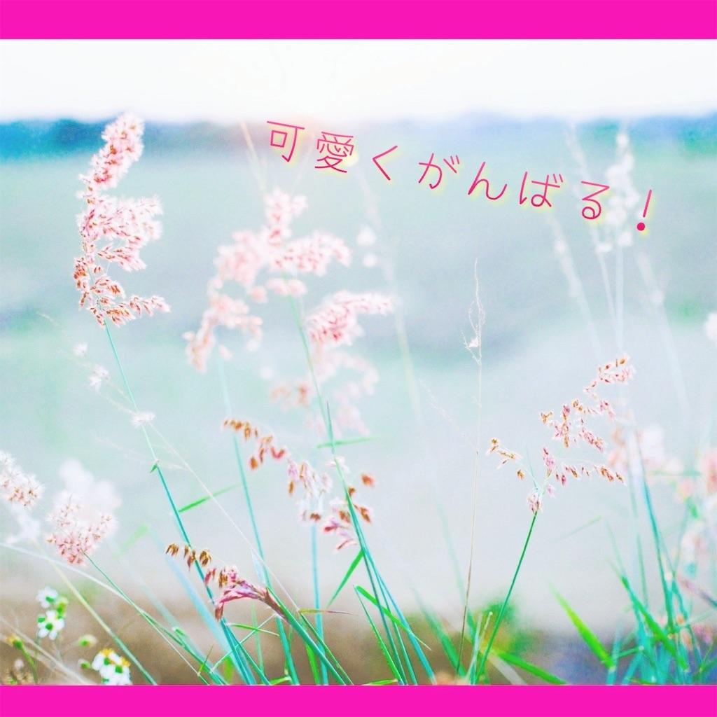 f:id:amai310mizu:20210414193929j:image