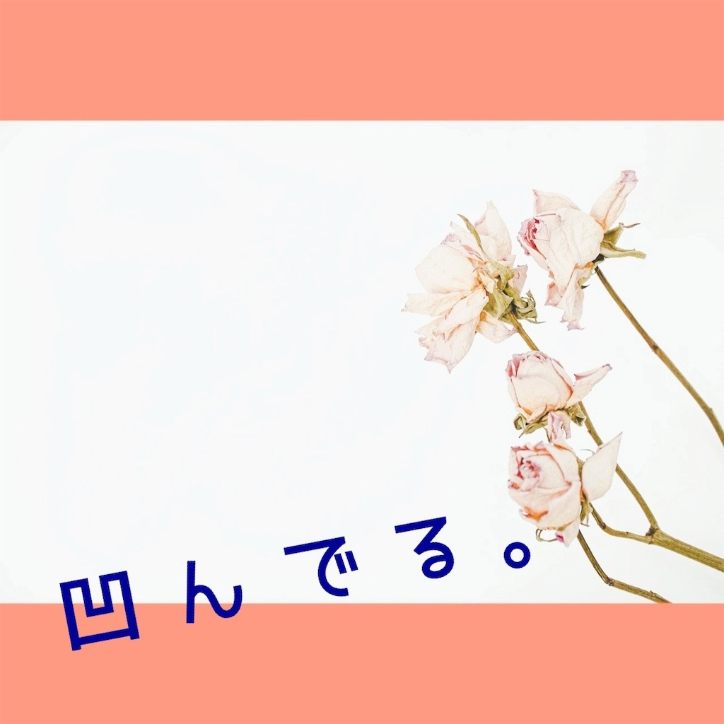 f:id:amai310mizu:20210504194921j:image
