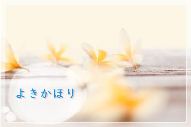 f:id:amai310mizu:20210829050226j:plain