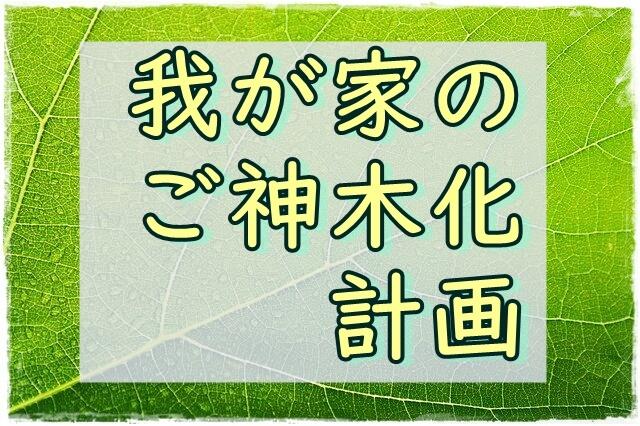 f:id:amai310mizu:20210922030619j:plain