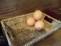[趣味]卵ショボーン