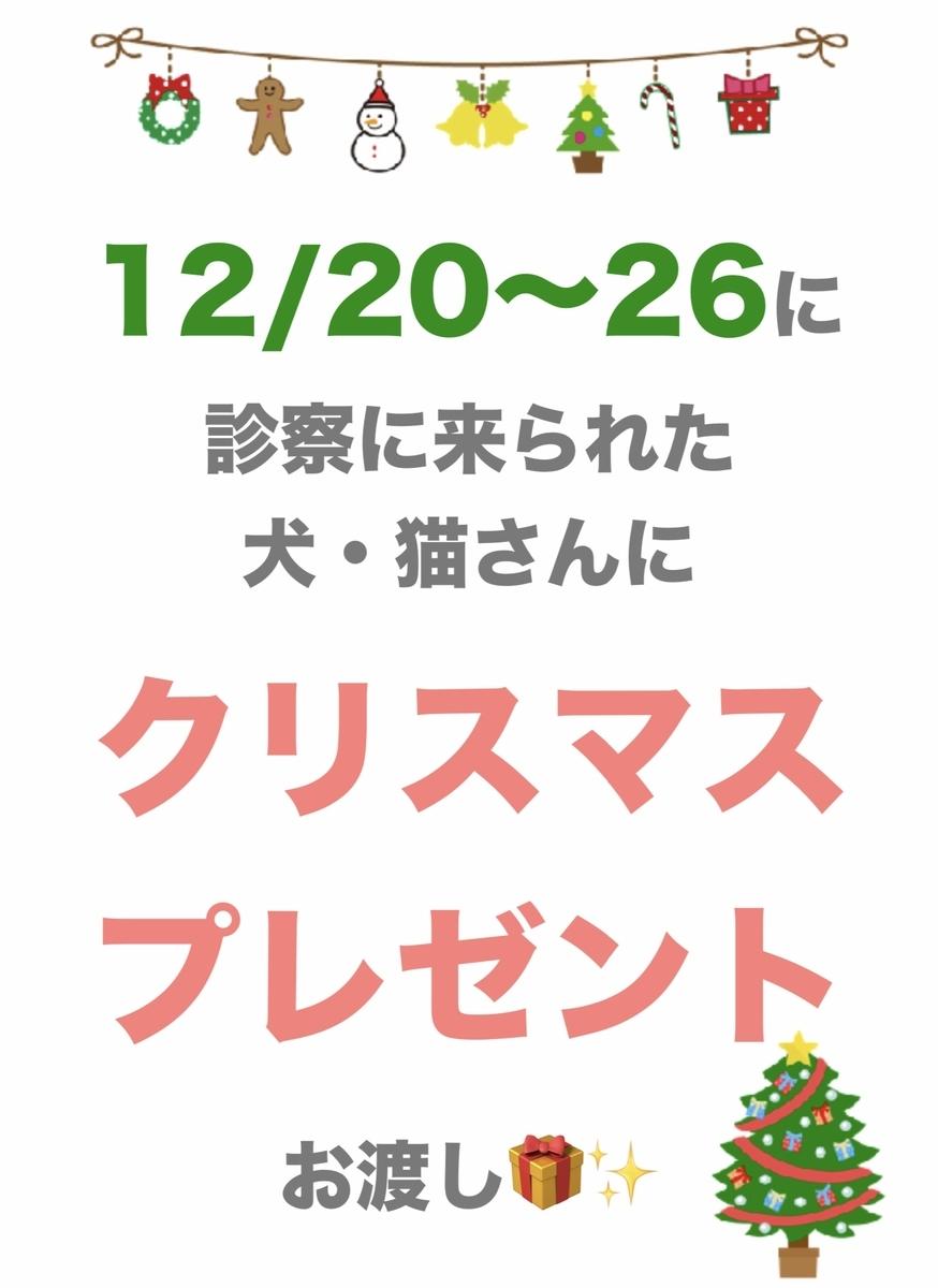 f:id:amami-ah:20201220124401j:plain