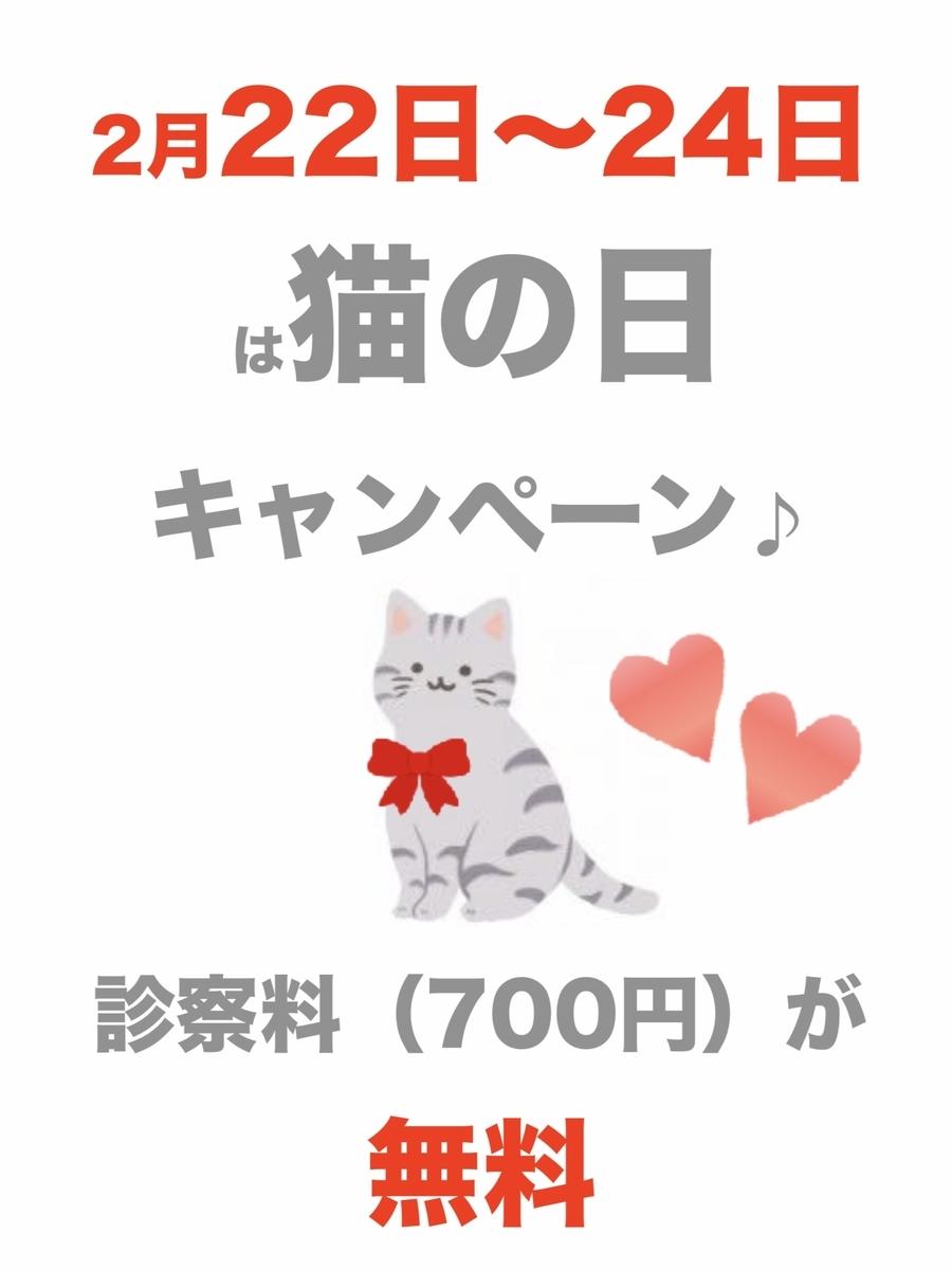 f:id:amami-ah:20210221210037j:plain