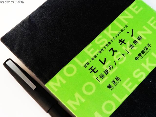 f:id:amamimori:20180526204908j:plain