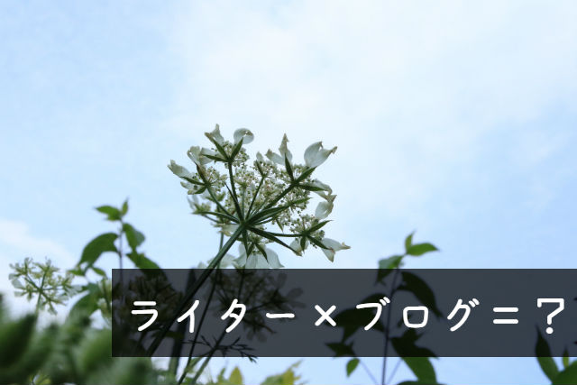 f:id:amamiya9901:20170614171329j:plain