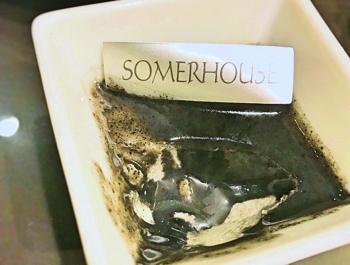 黒ゴマのブランマンジェのアップ写真