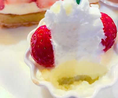 ザ・テラス 苺のレアチーズケーキ 断面写真