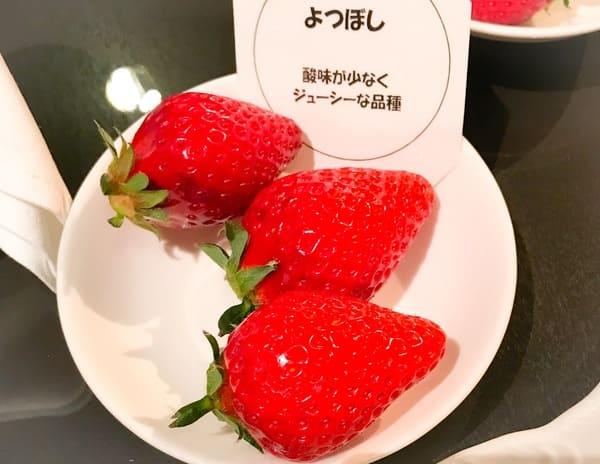横浜ベイホテル東急 ナイトタイムデザートブッフェ ソマーハウス 苺ジャーニーでの食べ比べ苺