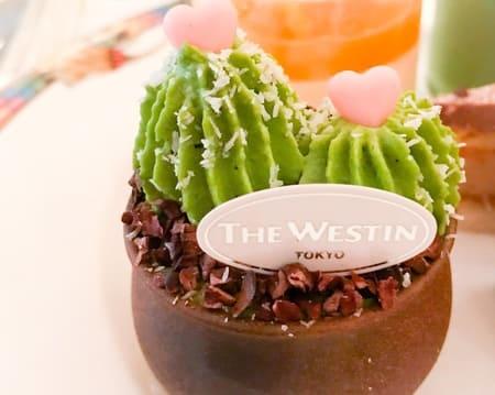 ザ・テラス 抹茶スイーツブッフェ ブログ 可愛いサボテンのミニ盆栽の感想