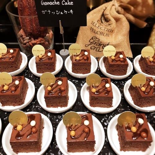 ザ・テラス 2019年11月 チョコレートデザートブッフェ ガナッシュケーキ