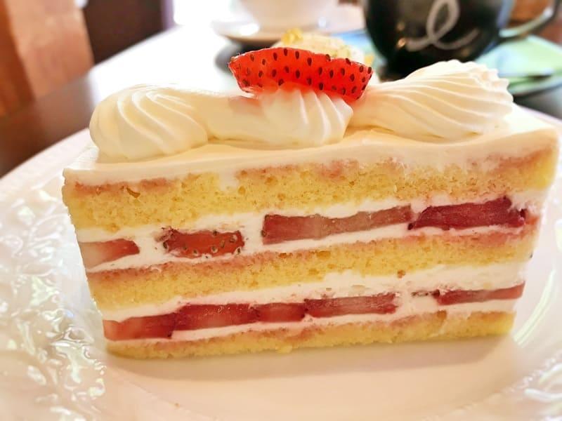 カフェミクニズ ショートケーキ ブログ