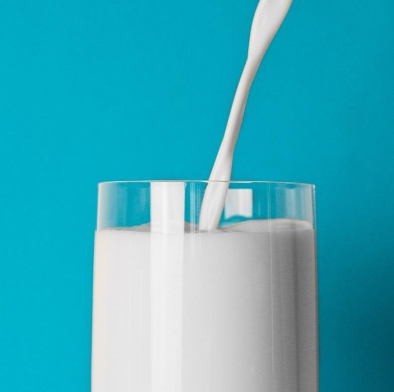 牛乳を飲んでも身長は伸びない