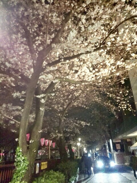 f:id:amaneukiyo:20170404224700j:image