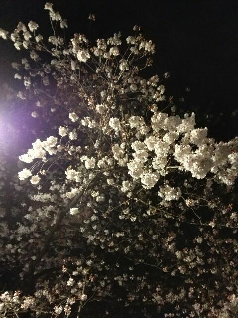 f:id:amaneukiyo:20170404224831j:image