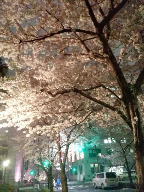 f:id:amaneukiyo:20170409074810j:image