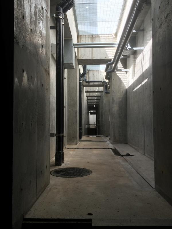 大学の地下