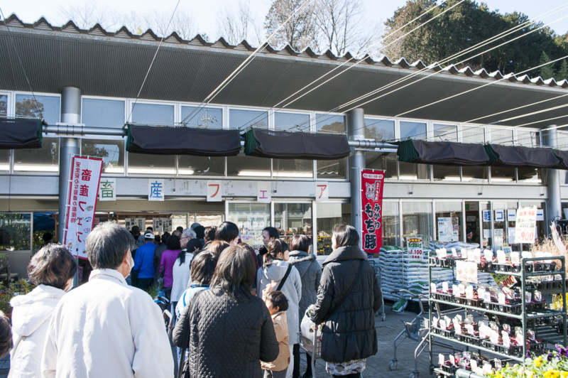 f:id:amano_shintaro:20170302091116j:plain