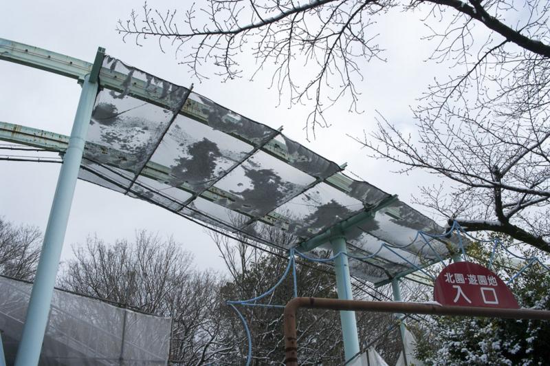 雪の東山動物園はモノレール運休