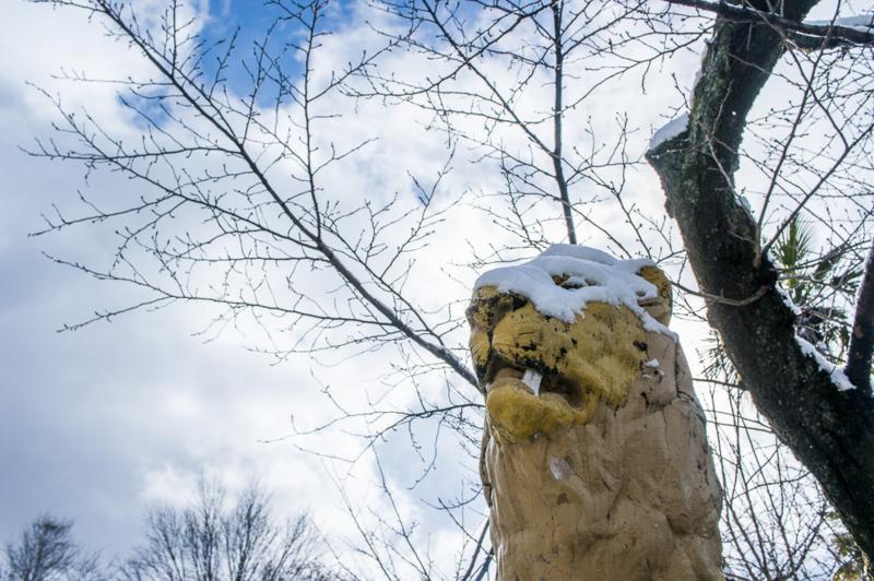 ライオン仮面舞踏会