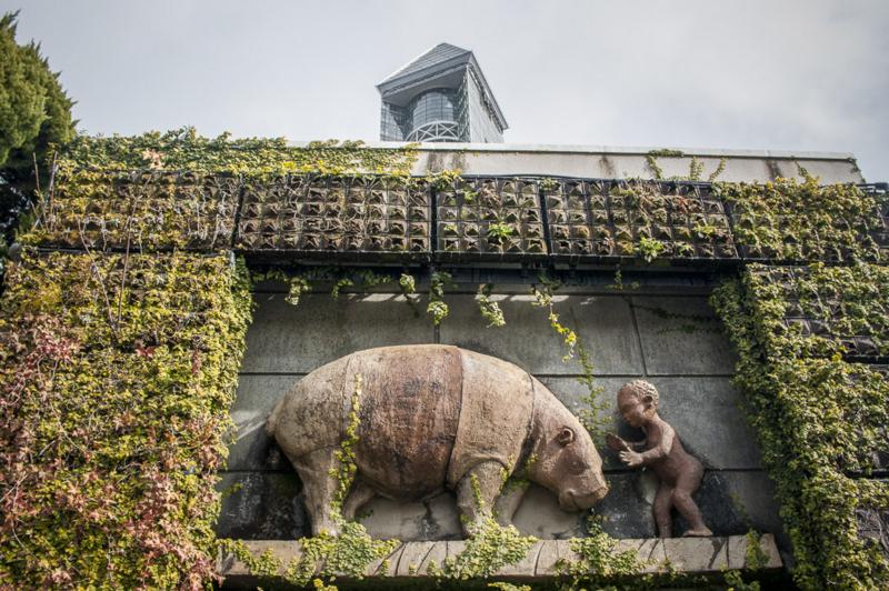 東山動植物園のコビトカバの壁画