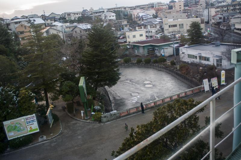 東山動植物園の雪解け